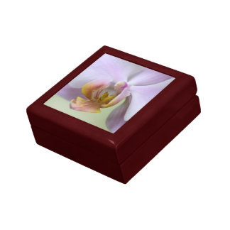 Orchid Small Square Gift Box
