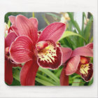 Orchid Standouts Mouse Mat