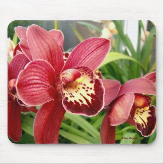 Orchid Standouts Mouse Mat