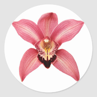 Orchid Stickers