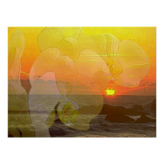 Orchid Sunset Print