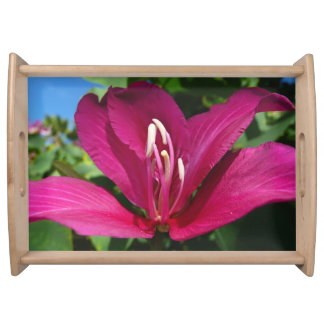 Orchid Tree Blossom Serving Tray