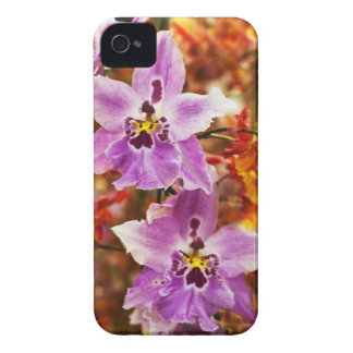 Orchid Tropical Blackberry Bold Case
