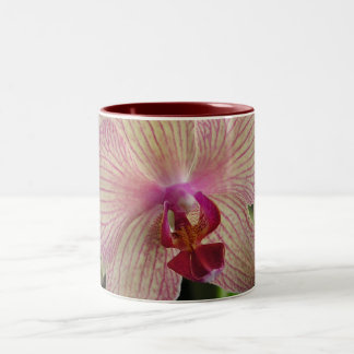 Orchid Two-Tone Coffee Mug
