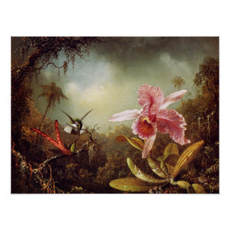 Orchid with Two Hummingbirds Poster