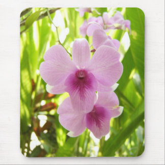 Orchid - World Of Our Own Mouse Mat