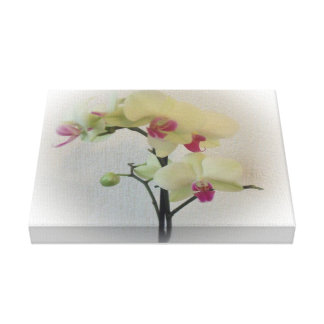 Orchid Wrapped Canvas