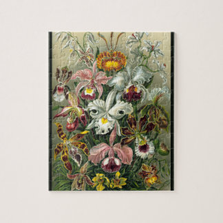 Orchidea - Ernst Haeckel Jigsaw Puzzle