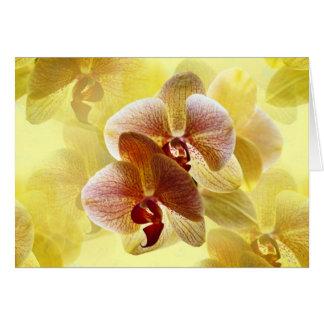 Orchidee Karte
