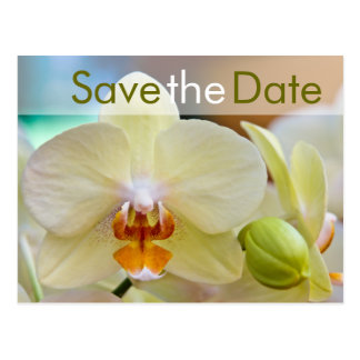 Orchidee • Save the Date Postkarte Postcard
