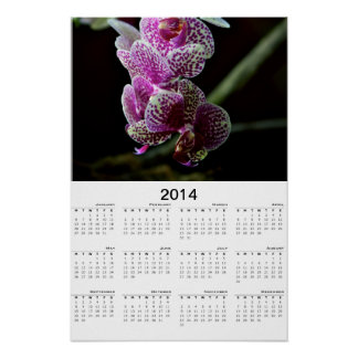Orchids 2014 Calendar Poster