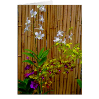 Orchids and Bamboo Card