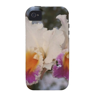Orchids at Sunset Case-Mate iPhone 4 Covers