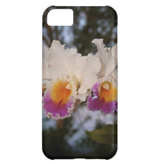 Orchids at Sunset Cover For iPhone 5C