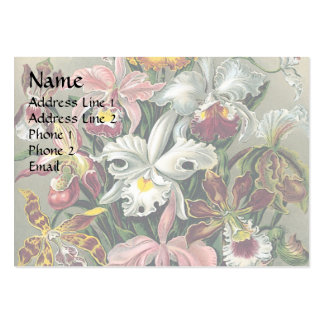 Orchids by Haeckel Business Card