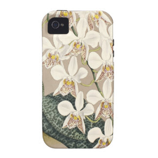 Orchids iPhone 4/4S Covers