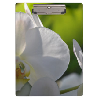 Orchids Clipboard