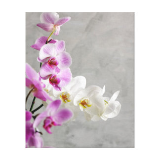 Orchids close up canvas print