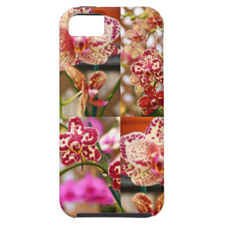 Orchids collage case for the iPhone 5