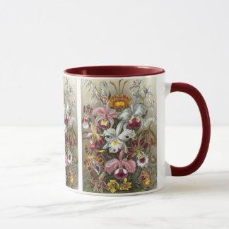 Orchids Ernst Haeckel Fine Art Mug