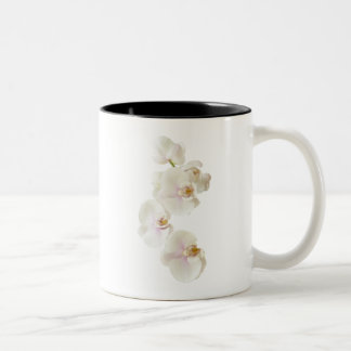 Orchids Flowers Two-Tone Coffee Mug
