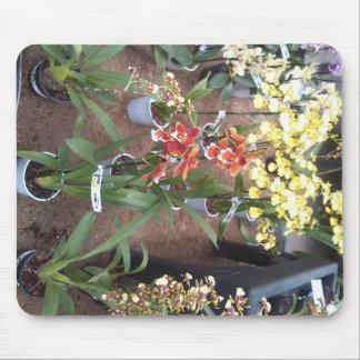 Orchids for sale mouse mat
