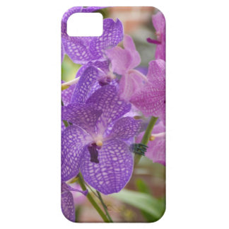 orchids. iPhone 5 cases