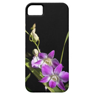 Orchids iPhone 5 Covers