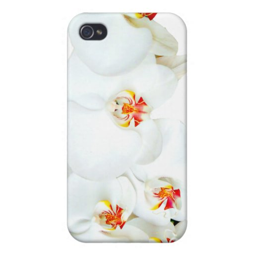Orchids Love_ iPhone 4 Cover