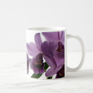 Orchids/ Mother's Day--Birthday Gift Mug