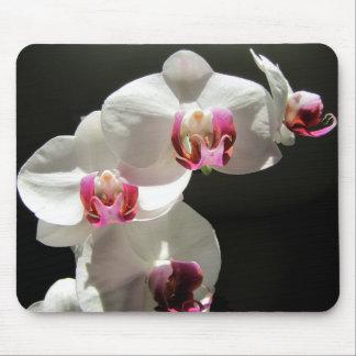 Orchids Mouse Mat