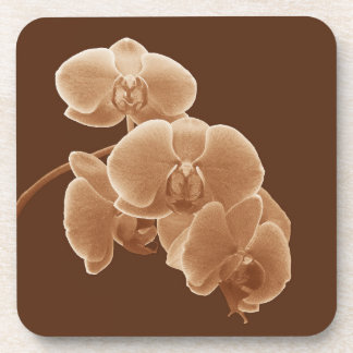 Orchids Photo to Paint in Sepia Coaster