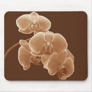 Orchids Photo to Paint in Sepia Mouse Pad