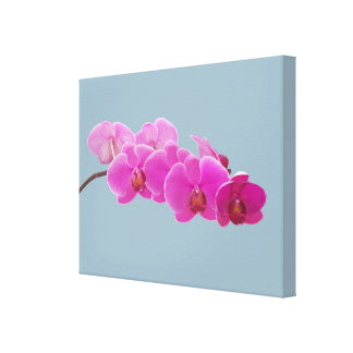 Orchids Photo to Paint on Blue II Canvas Print