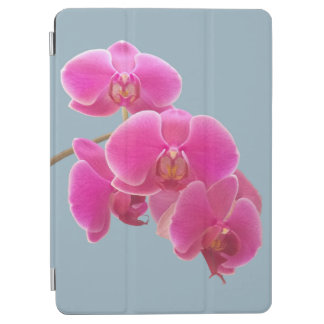 Orchids Photo to Paint on Blue iPad Air Cover