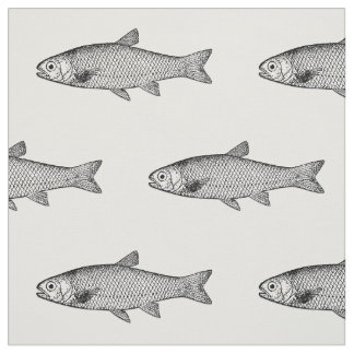 Ordinary Fish, color background choice Fabric