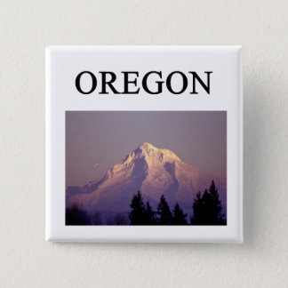 oregon 15 cm square badge