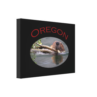 Oregon Stretched Canvas Prints