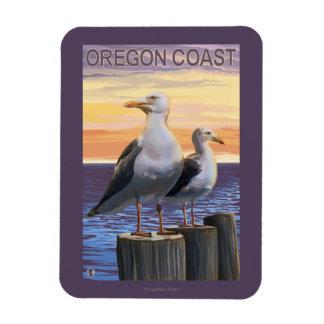 Oregon Coast Sea Gulls Rectangular Photo Magnet
