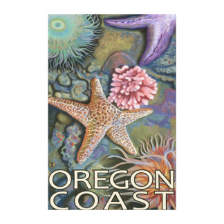 Oregon Coast Tidepool Canvas Print