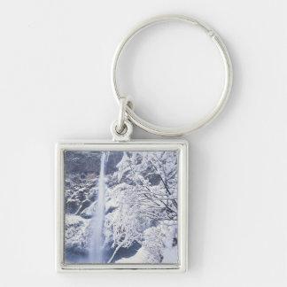 Oregon, Columbia Gorge National Scenics Area, Silver-Colored Square Key Ring