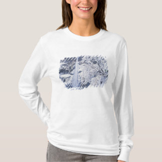 Oregon, Columbia Gorge National Scenics Area, T-Shirt