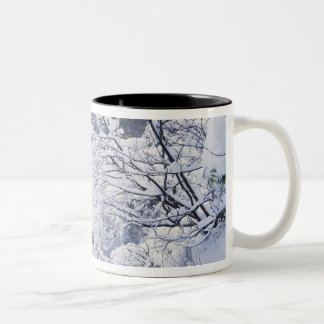 Oregon, Columbia Gorge National Scenics Area, Two-Tone Coffee Mug