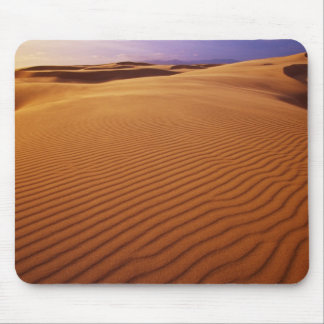 Oregon Dunes National Recreation Area, Oregon at Mouse Mat