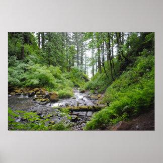 Oregon forest poster