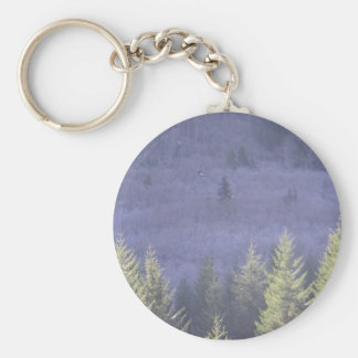 Oregon Senic Highway Key Ring
