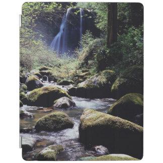 Oregon, Siskiyou National Forest, Elk Creek iPad Cover
