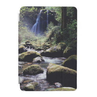 Oregon, Siskiyou National Forest, Elk Creek iPad Mini Cover