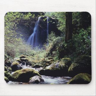 Oregon, Siskiyou National Forest, Elk Creek Mouse Pad