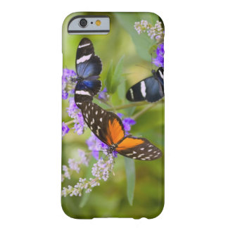 oregon, usa barely there iPhone 6 case